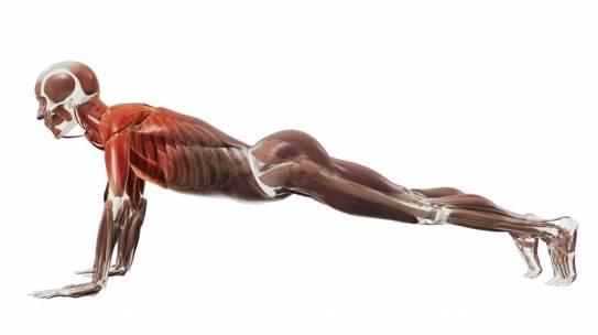 ABS Workout czyli Absolutnie Bez-Sensowny Trening mięśni brzucha: